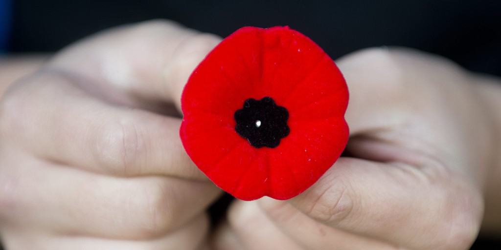A Remembrance Day Poppy Photo credit: Graham Hughs- Canadian Press