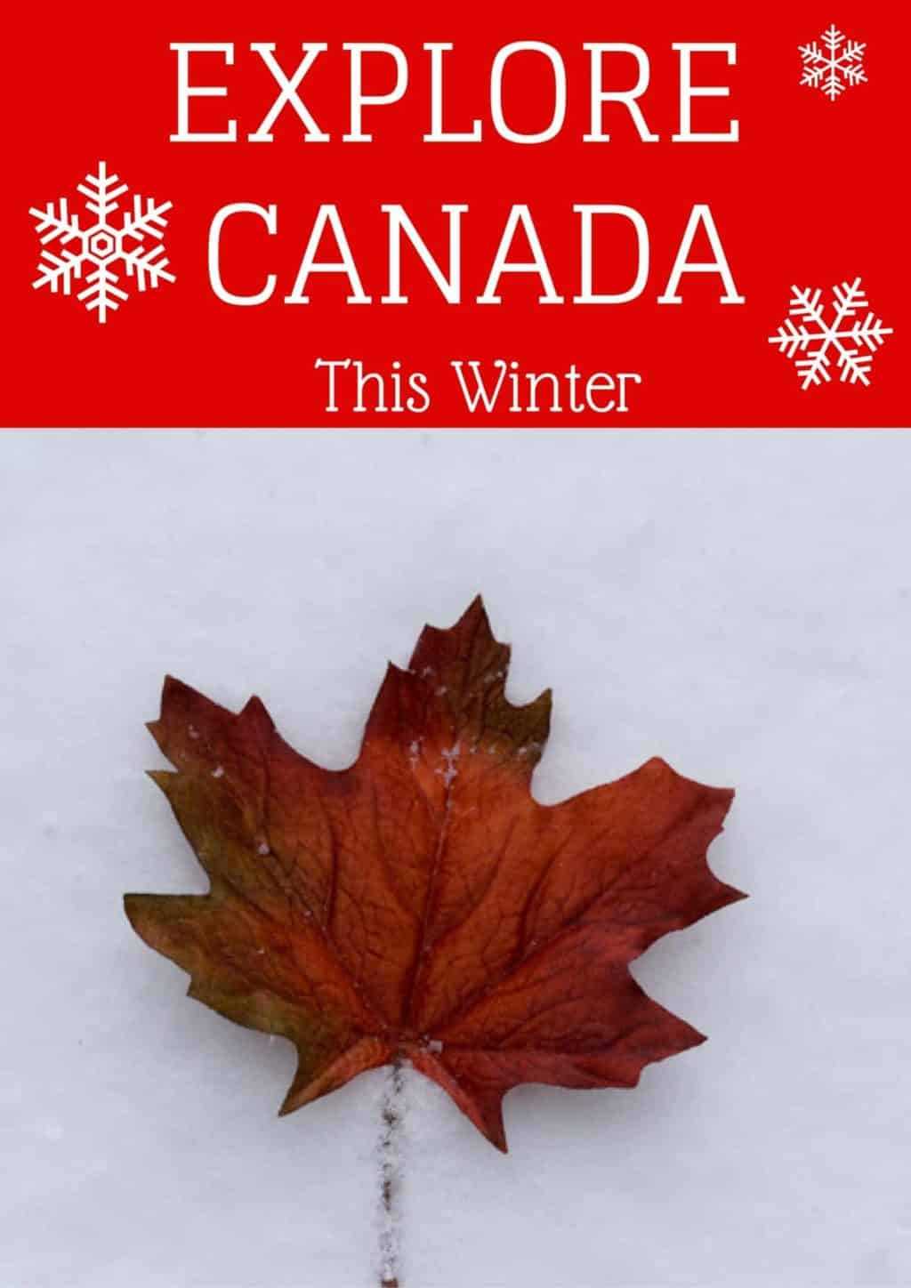 explore Canada in the winter