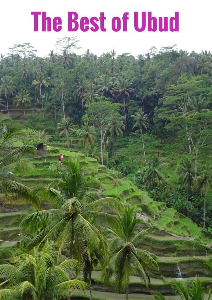 Best of Ubud