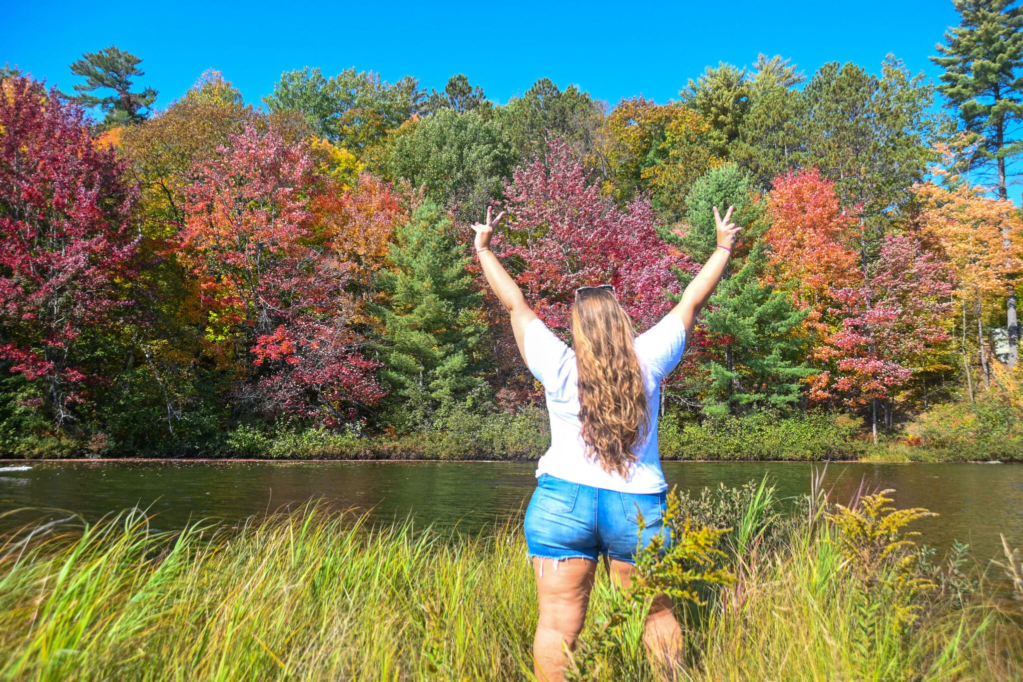 Hannah Logan standing in long grass looking at trees changing colours