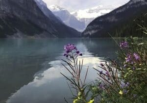 Lake Louise in Summer