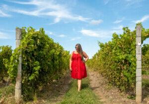 Hannah Logan in PEC Vineyards